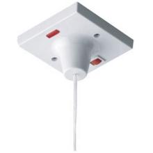 Nexus 45 Amp Double Pole Ceiling Switch With Neon Indicator
