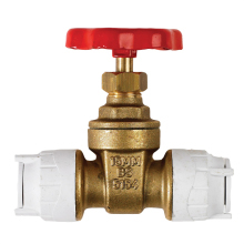 PolyFit 15mm Gate Valve Brass