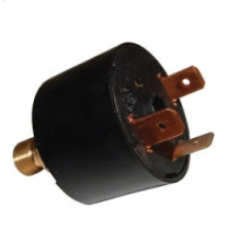 RAD59015La Water Pressure Switch 1/8""