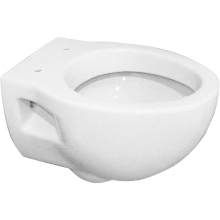 Suregraft Aroza Wall Hung WC Pan - White