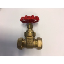 Suregraft Brass Gate Valve 22mm